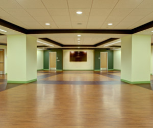 The WOOD floor uses the color green to reflect the wood element