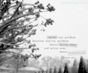 never-say-goodbye-because-saying-goodbye